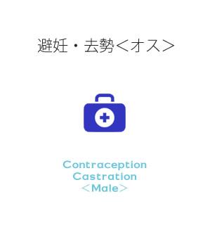 避妊・去勢<オス>
